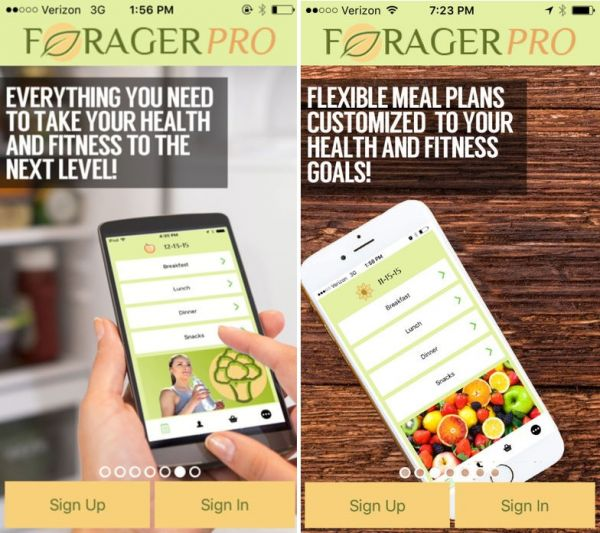 Staying healthy is easier with meal plans from ForagerPro